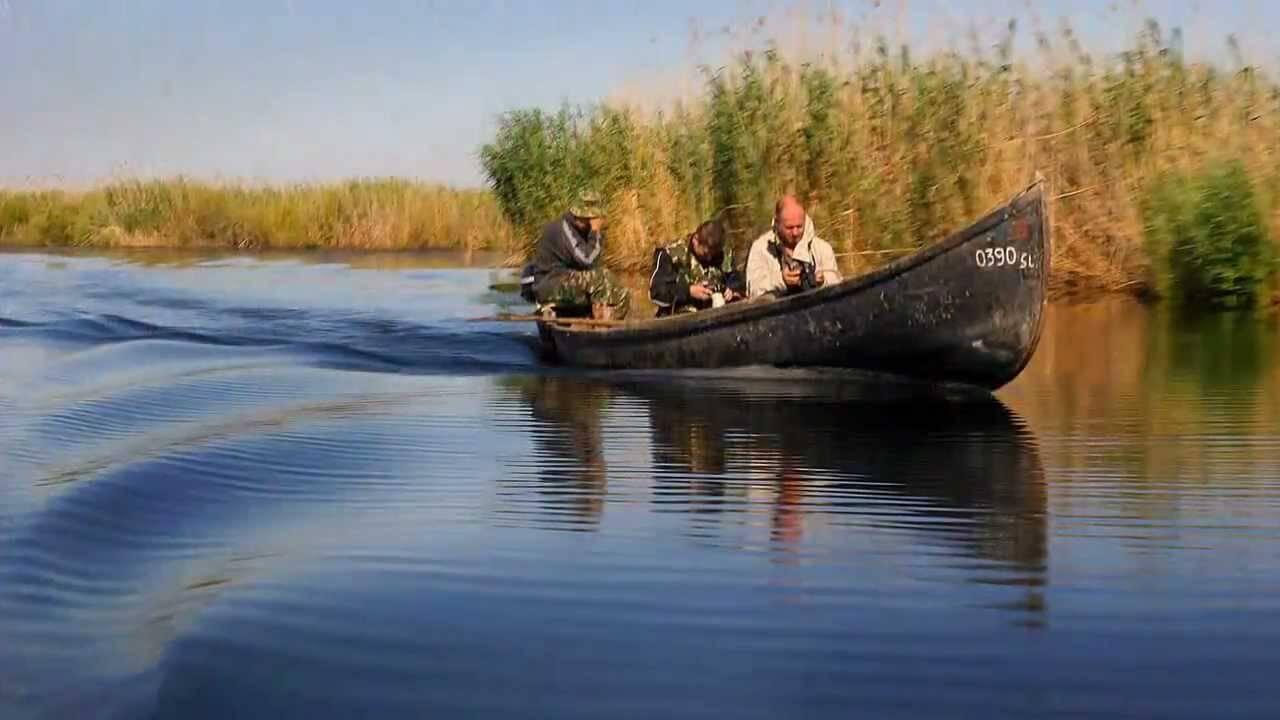 Danube Delta - Đồng bằng Danube thơ mộng