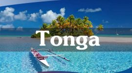 How many ways are there to get Vietnam visa in Tonga?